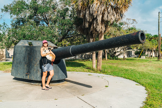 Super Pet-Friendly Fort De Soto Park in Florida