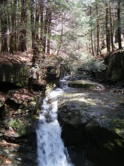 Shandaken Brook Lean-To Hike - 4/26/11