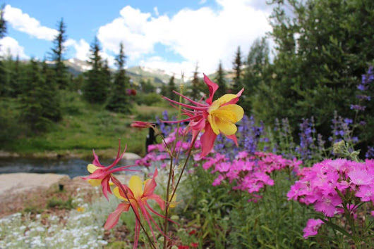 5 Hikes in Breck You Can Do from Main Street