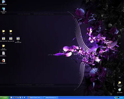 FULL WALLPAPER: Orchid desktop wallpaper