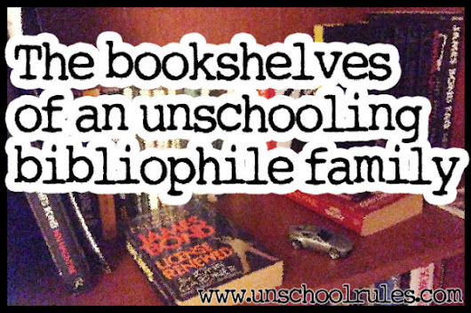 The bookshelves of a house of unschooling bibliophiles - Unschool RULES