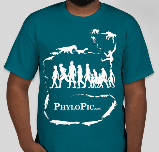 Half a Billion Years in the Making: The PhyloPic T-shirt