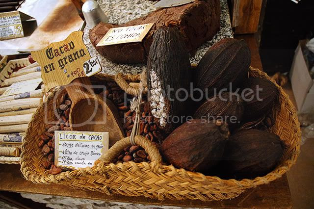 Cocoa Fruit and Grains Detail in Chocolate Trade Show, Barcelona [enlarge]
