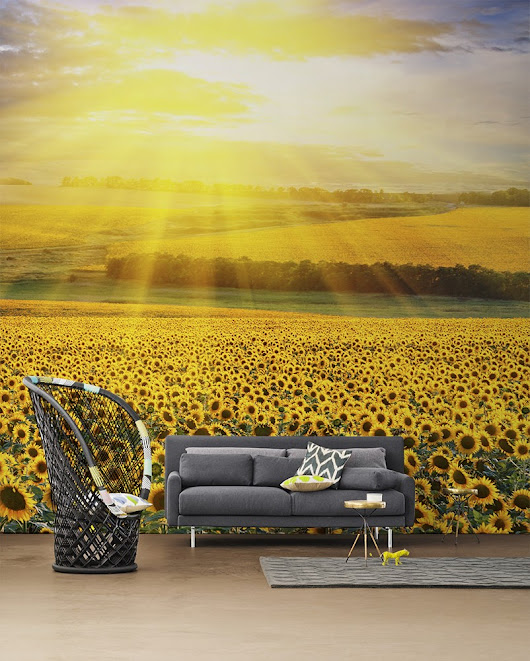 Nature-Inspired Eye-Deceiving Wall Murals to Make Your Home Look Bigger