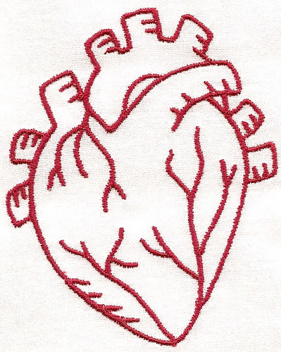 vital organs heart