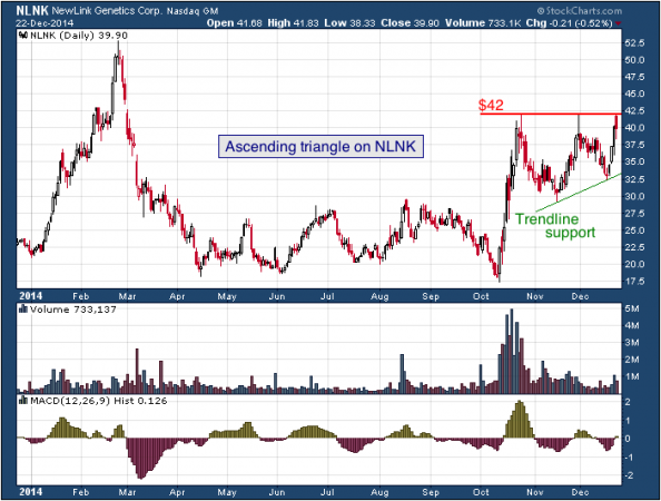 1-year chart of NewLink (Nasdaq: NLNK)