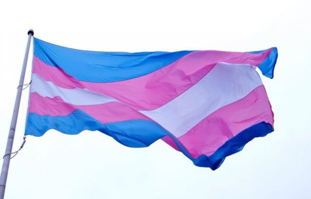 Image result for Trans Awareness Month