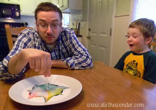 Milk Color Explosion: Take 3 {Saturday Science} | Stir the Wonder