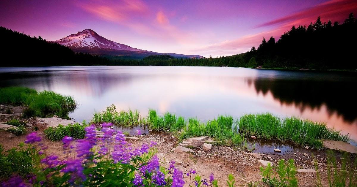 12++ Beautiful Hd Nature Wallpaper Free Download - Basty ...