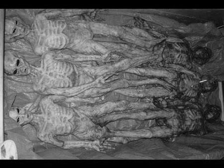 extraterrestres-muertos-Carolinas-1941.j