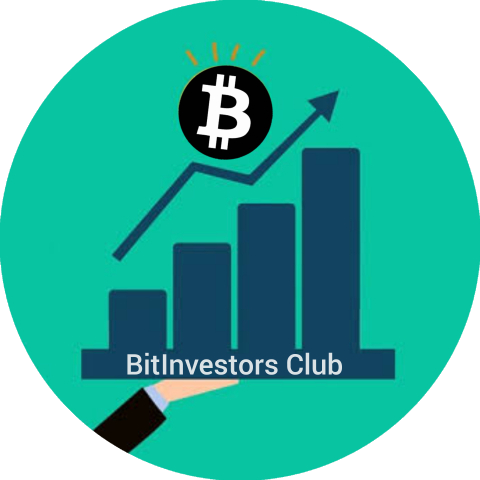 BitInvestors.Club | Invest In Cryptos And More