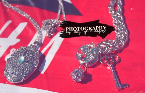 http://i402.photobucket.com/albums/pp103/Sushiina/diary_shopped2.jpg