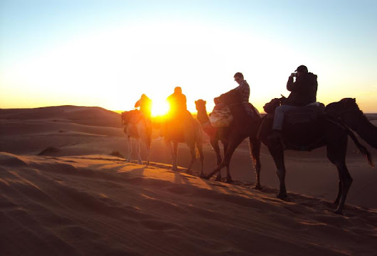 Morocco Camel Ride Dunes,Sunset,Sunrise,Overnight Tours, Trekking