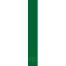 Irish Pride Kelly Green Tie tie