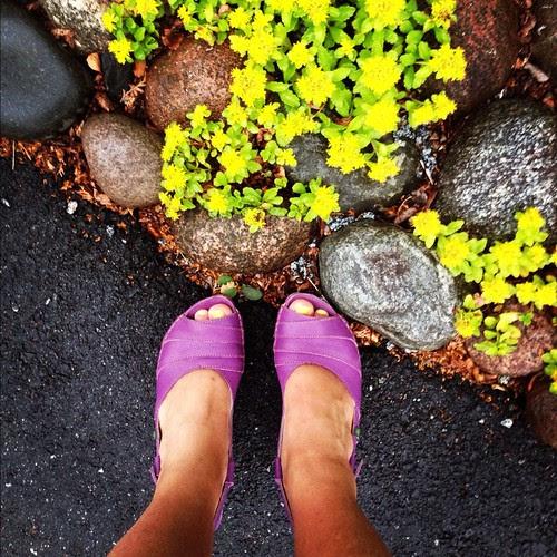 shoe per diem july 8, 2012 -