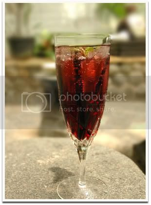 Sloe Cranberry Cooler