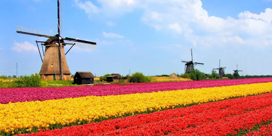 Why Do People Call the Netherlands Holland? | Sporcle Blog