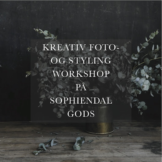 Photo- & styling workshop (DK)