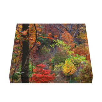 Arkansas Autumn Landscape Wrapped Canvas