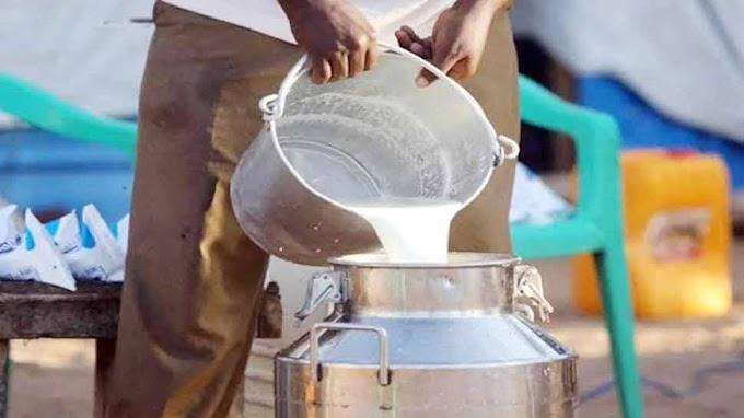 1 मार्च से 100 रुपये प्रति लीटर बिकेगा दूध, Hisar में खाप पंचायत ने कृषि कानून और तेल की कीमत के विरोध में किया फैसला