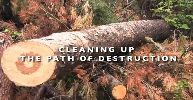 Frame grab from video showing clean up efforts in the Great Smokies National Park