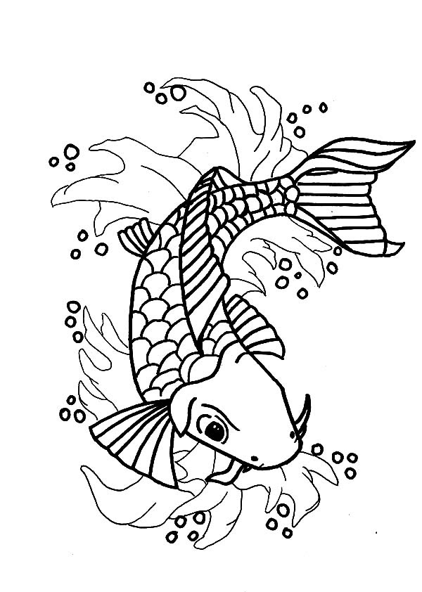 Nishikigoi Koi Fish Coloring Pages  Download \u0026 Print Online Coloring Pages for Free  Color Nimbus