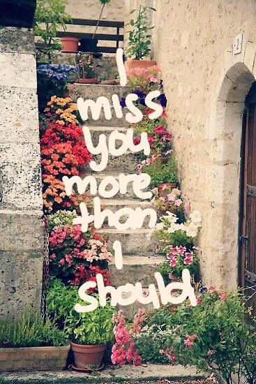 I Miss You More Than I Should Pictures Photos And Images For