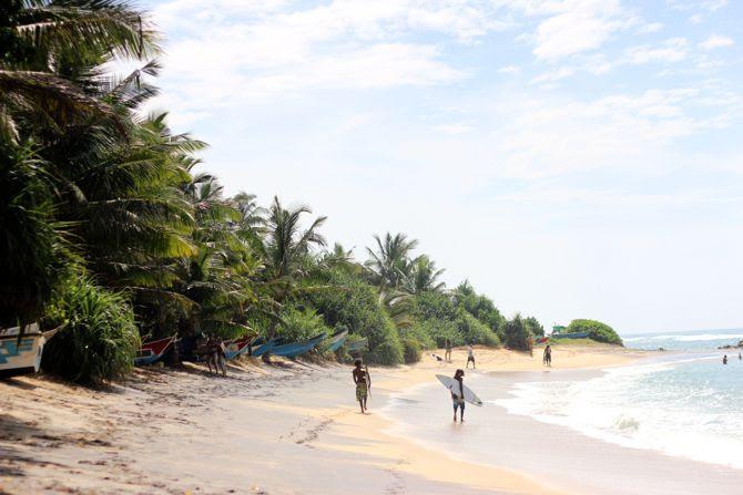 photo 10-combi billabong womens_combishort-palmiers-srilanka-mirissa_zpsjc1nilwr.jpg