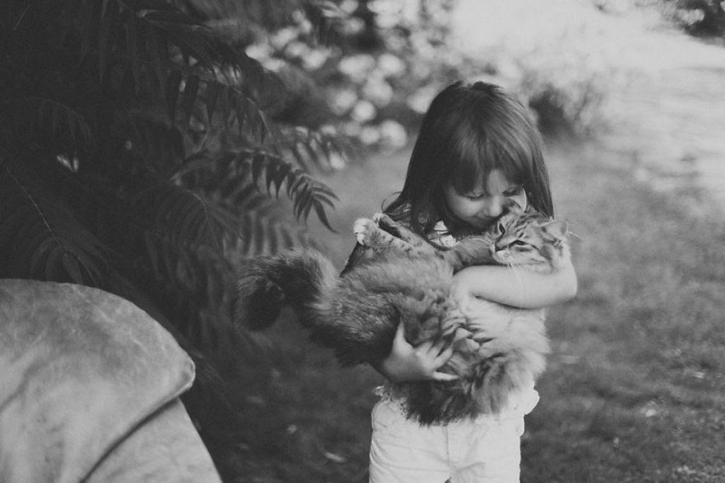 20 crianças brincando com seus gatos que alegrarão o seu dia 18