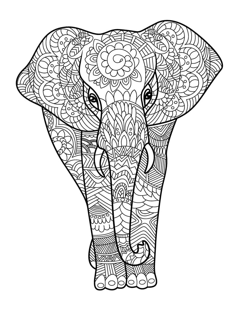 Amazing Animals for Adults Who Color - Live Your Life in ...