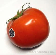 http://laxanokipos.com/agro/wp-content/uploads/2015/04/Super-Market-Tomato.jpg