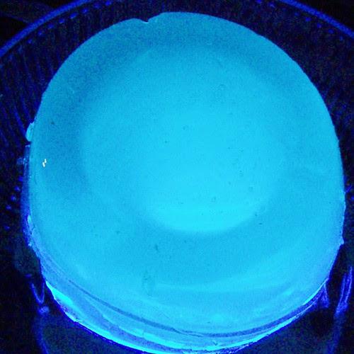 2009-08 (Aug)029