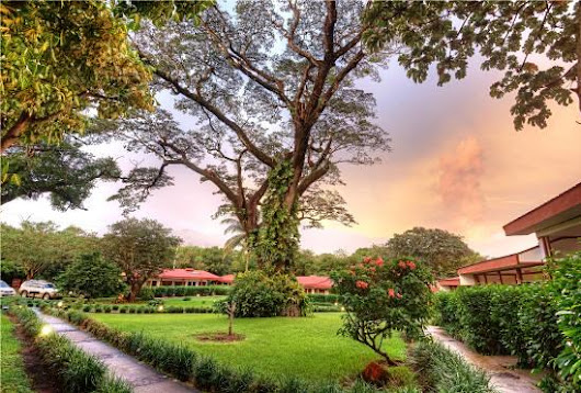 Why TripAdvisor Helps You Find the Best Hotels in Costa Rica - Enchanting Costa Rica