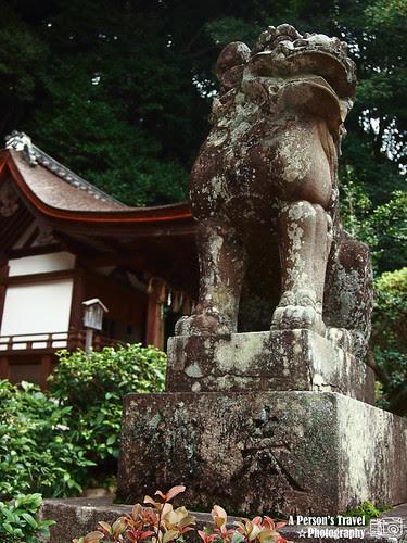 2011Kyoto_Japan_ChapTen_14