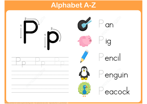 letter p is for pan pig pencil penguin peacock tracing worksheet puzzle game