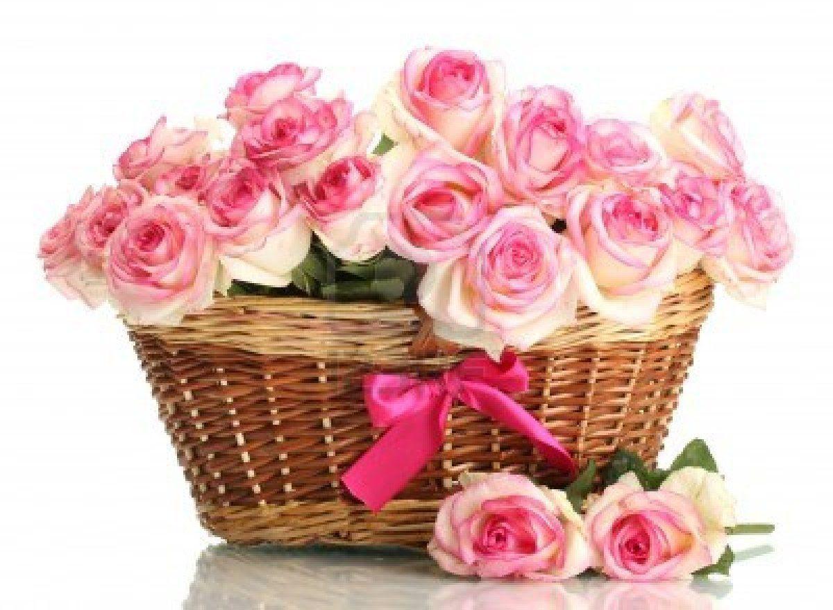 Cesto De Rosas Rosas Imágenes Y Fotos