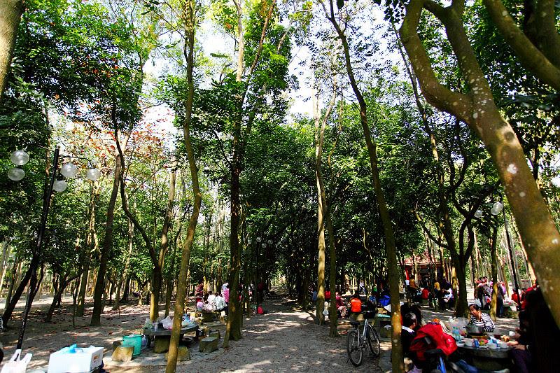 台南柳營親子景點設施樂園|南元花園休閒農場