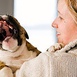 5 Puppy Dental Care Tips