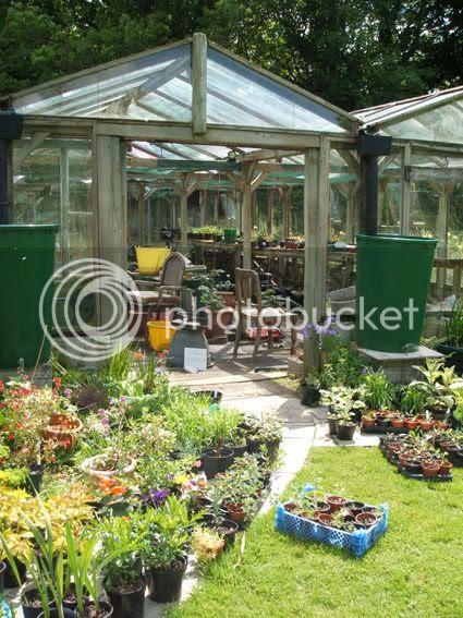greenhouse at Hidden Valley Gardens at Treesmill Near Par