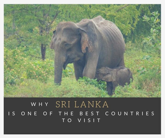 Why Sri Lanka Is One Of The Best Countries You Can Visit