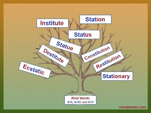 Institute Roots STA, STAT, and STIT in Mind to 'Stand' out from the Rest