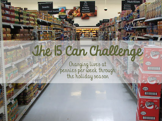 The 15 Can Challenge: How You Can Make a Difference With One Can Each Week - Mama Plus One