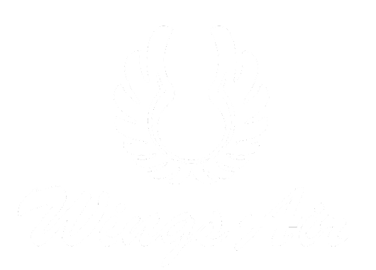 Wings Air – Jadwal Penerbangan dan Tiket (WEB PROMO) – Website Wings Air