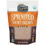 Lundberg Organic Brown Rice, Short Grain, Sprouted - 16 oz