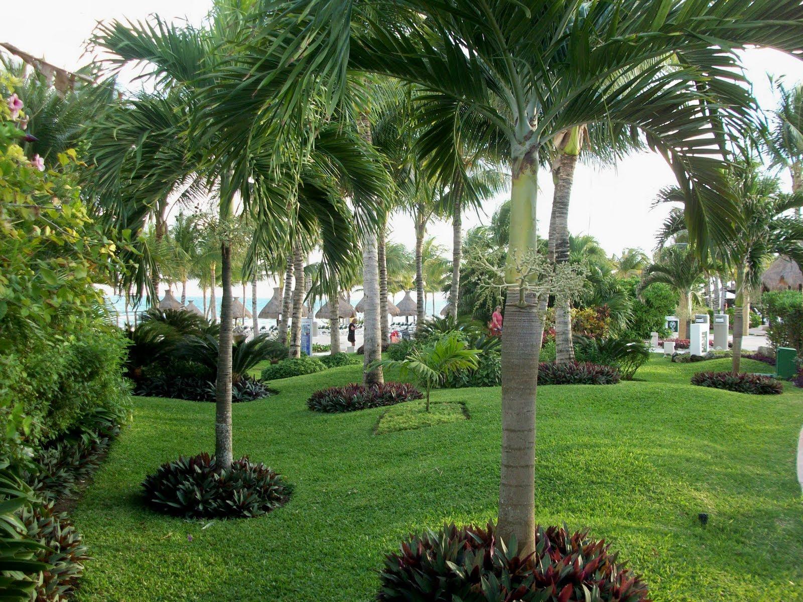 Florida Landscape De