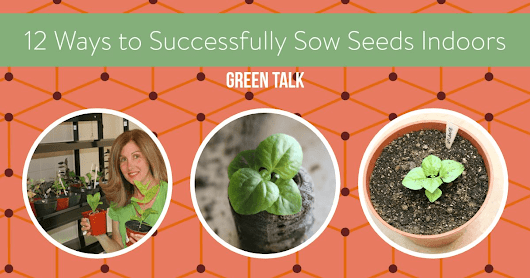 12 Ways to Successfully Sow Seeds Indoors - Green Talk®