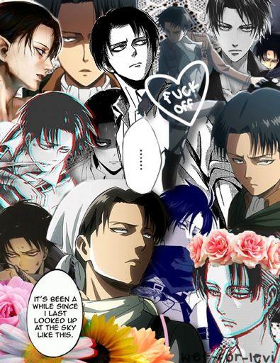 Levi Ackerman Wiki Anime Amino
