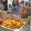 Food Forward gathers food supplies for the hungry in Ventura County |