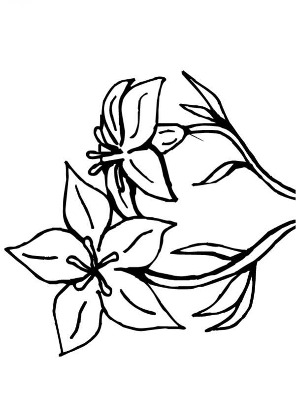 Cosas Para Dibujar Faciles Para Nios Wallpapers Web Az Dibujos