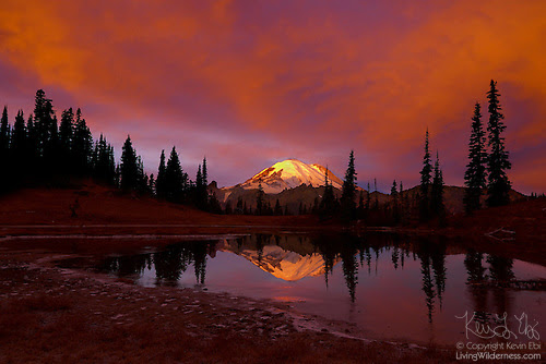 Fiery Sunrise Over Mount Rainier, Tipsoo Lake, Mount Rainier National Park